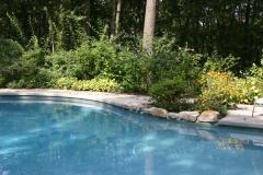 Backyard Pool Installation Service
