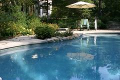 Backyard Pool Design & Installation