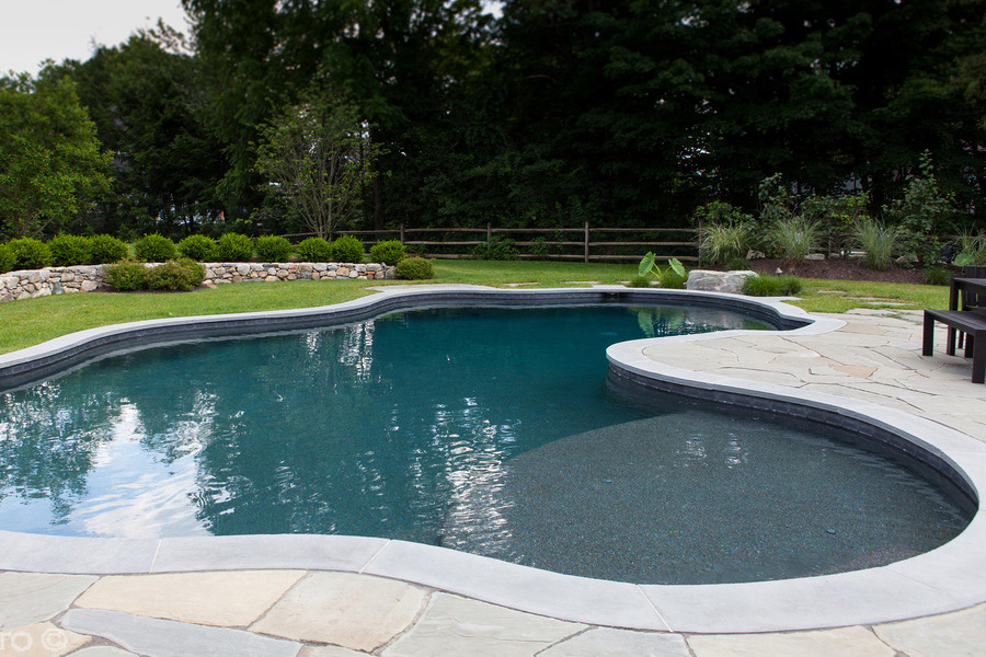 Pool design installation ferrari pools for Pool design with sun shelf