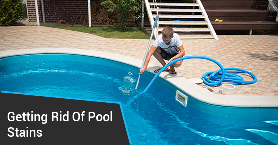 How to identify and remove pool stains ferrari pools for Staines swimming pool timetable